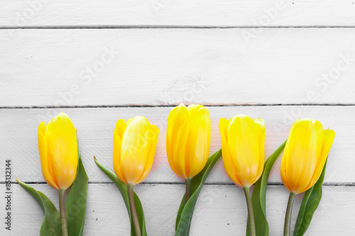 Foto op Canvas Bloemen fresh yellow tulips