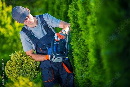 Fotografie, Obraz  Nůžky na živý plot Works