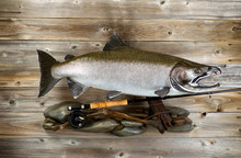 Large Salmon And Fishing Gear ...
