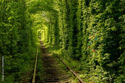 Tunel miłości w Klevan na Ukrainie