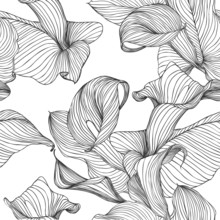 Seamless Vector Pattern - Flowers Calla. Black Lines On White