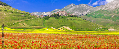 Canvas Prints Honey scenic of Italy - Castelluccio di Norcia, blooming meadows. Umbr