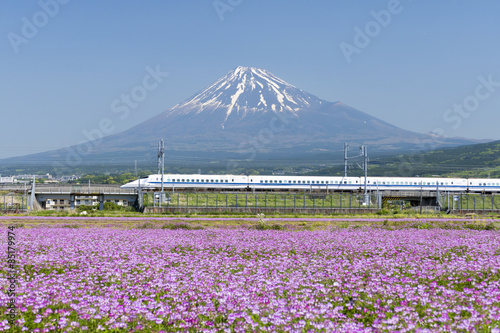 Tuinposter Purper 新幹線と富士山とお花畑 快晴青空