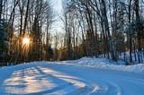 Poranek w lesie zimą