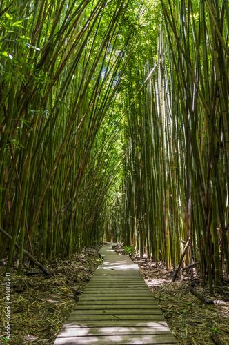 Pipiwai Trail auf Maui