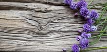 Schnittlauch Blüten Auf Altem Treibholz Brett / Holz
