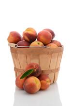 Basket Of Yellow Peaches