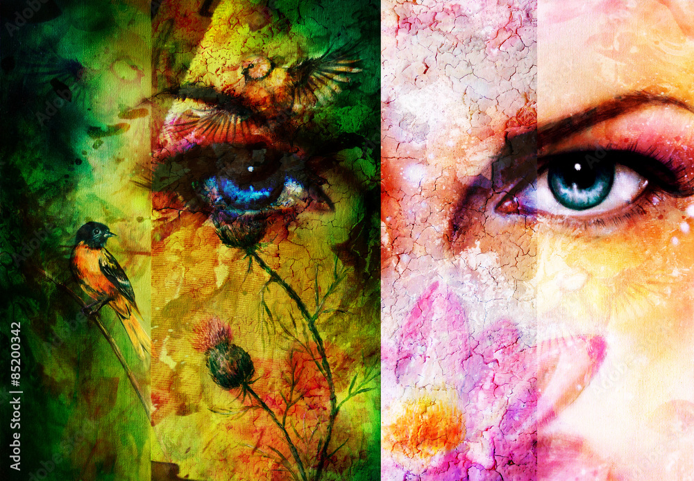 Fototapeta Color abstract background with birds and flower and  blue eye.