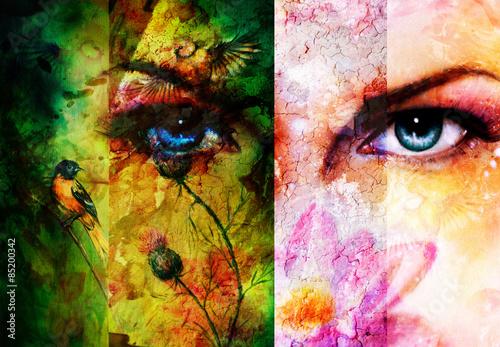 barwi-abstrakcjonistycznego-tlo-z-ptakami-kwiat-i-niebieskie-oko