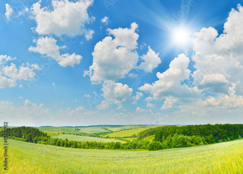 Poster Blauw Summer countryside