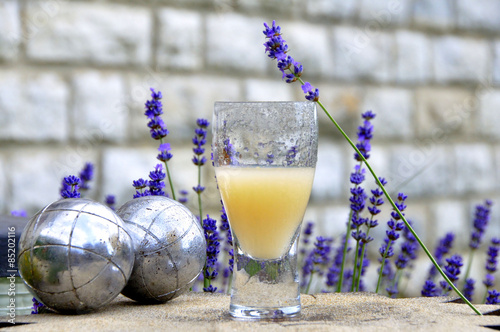 Photo Stands Lavender Pastis et lavande