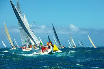 Fototapeta Sailing yachts regatta. Series yachts and ships
