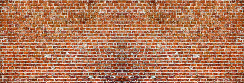 Fototapety, obrazy: Brick wall panaroma