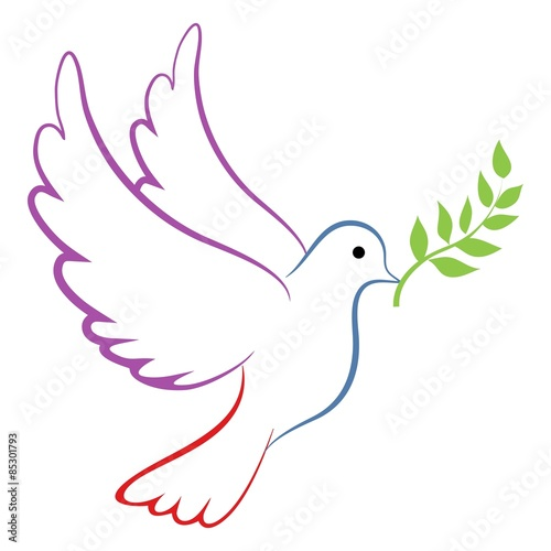 Peace Dove Color Canvas
