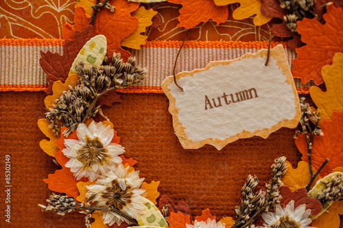 Papiers peints Rouge traffic autumn scenery with leaves and tag
