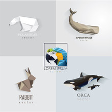 Animal Logo Set Collection In Trendy Low Polygon Style. Polar Bear, Sperm Whale, Macaw Parrot, Rabbit And Orca Whales