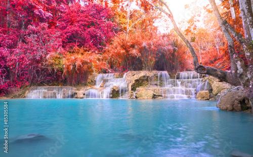 Foto op Canvas Watervallen Waterfall in rain forest (Tat Kuang Si Waterfalls at Luang praba