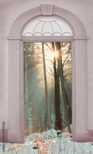 brama-z-widokiem-na-zimowy-las