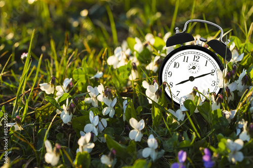 Alarm clock and flowers