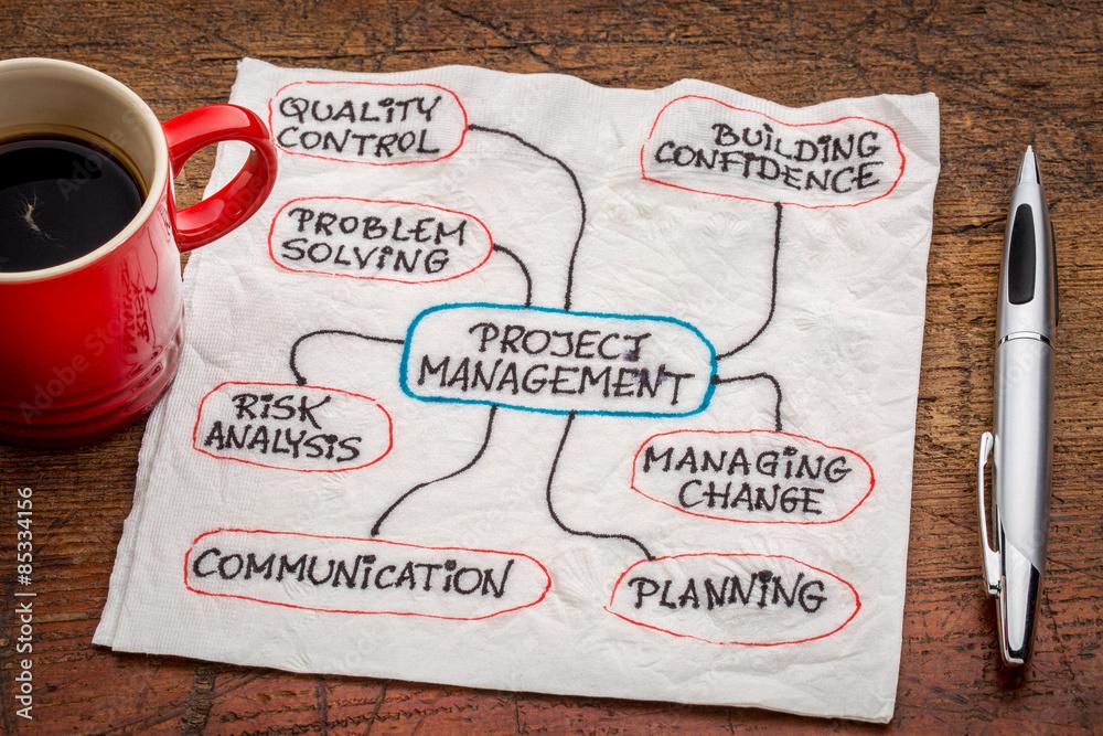 Fototapeta project management flow chart or mindmap
