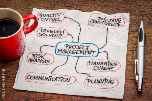 Fototapeta project management flow chart or mindmap obraz