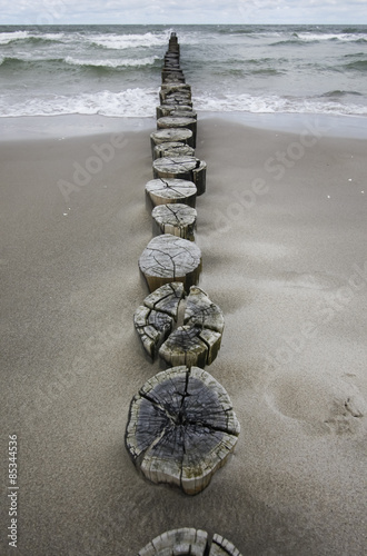 Germany, Fischland Darss Zingst, wooden stakes on the beach #85344536