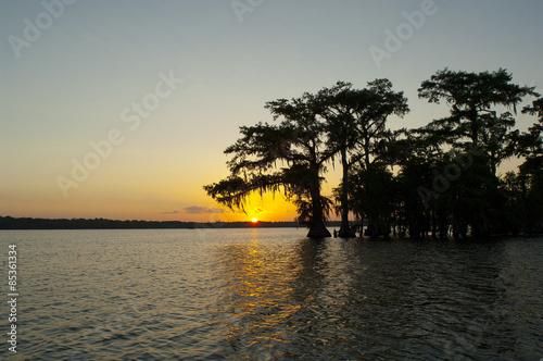 Fotografie, Obraz  Swamp at Sunset