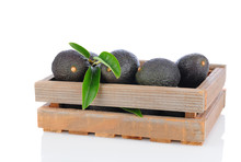 Hass Avocados In Wood Crate