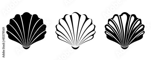 Fotografie, Obraz  Set of sea shells. Vector black silhouettes.