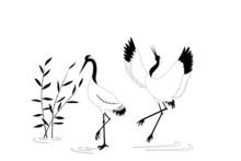 Birds Crane Nature Illustration