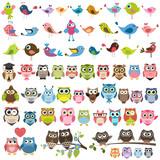 Fototapeta Fototapety na ścianę do pokoju dziecięcego - set of cartoon colorful birds and owls