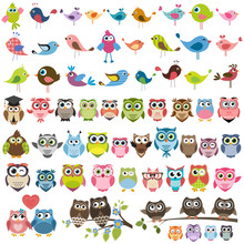 Set Of Cartoon Colorful Birds ...