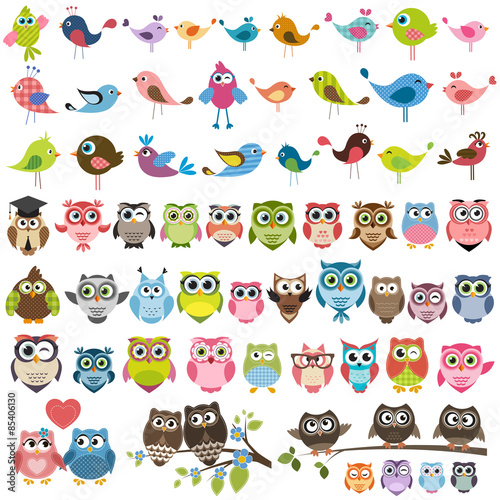 Deurstickers Uilen cartoon set of cartoon colorful birds and owls