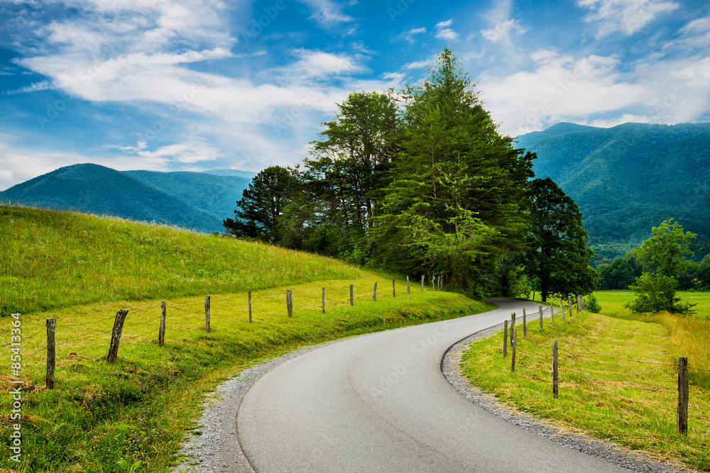 Fototapeta Paved trail at Cades Cove Great Smoky Mountains National Park i