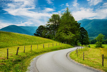Paved Trail At Cades Cove Great Smoky Mountains National Park I