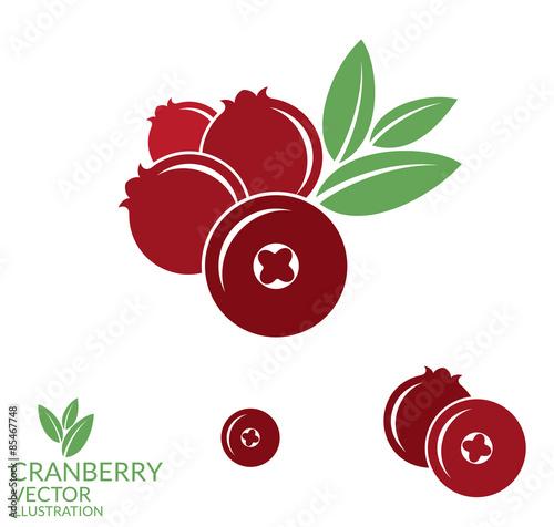 Fotografia  Cranberry