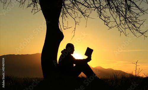 Fotomural kitap okuyan adam silüeti