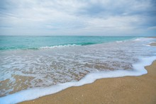 Beach, Florida, Wave.