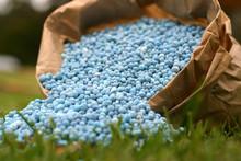 Blue Fertiliser In Brown Bag On Green Grass