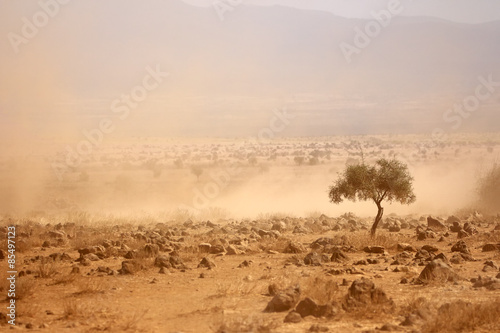 Fototapeta Dusty plains during a drought, Kenya