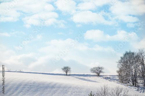 Fotografie, Obraz  美瑛の冬