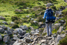 A Woman Hiker Backpacking In T...