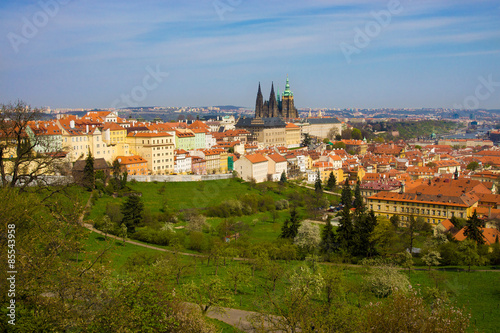 Canvas Prints Athens Prague panorama with St. Vitus Cathedral