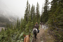 Horseback Riding Through Lake Louise Banff During Snow Storm