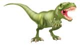 Fototapeta Dinusie - T Rex Dinosaur