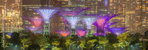 The Supertree at Gardens by the Bay, Singapore Wallpaper Mural