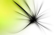 Modern Fractal Abstract Black White Flower Background
