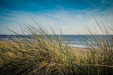 FototapetaStrand und Dünen an der Nordsee