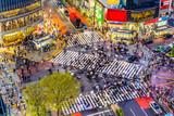 Shibuya Crossing in Tokyo