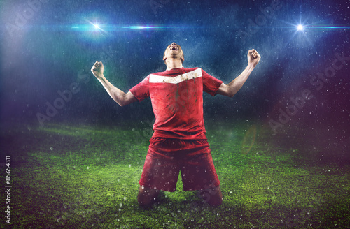 Fotografie, Tablou  Victorious Soccer Player